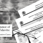 THE IMPORTANCE OF AFFIDAVITS FOR IMMIGRATION CASES